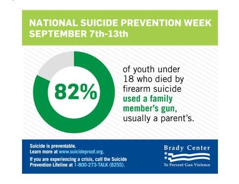 Graphic: Brady Campaign to Prevent Gun Violence