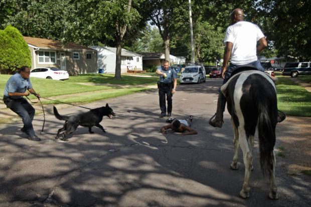 It's unknown if the suspect was spooked more by the police dog or the men on horseback chasing him. (Photo: St. Louis Post-Dispatch)