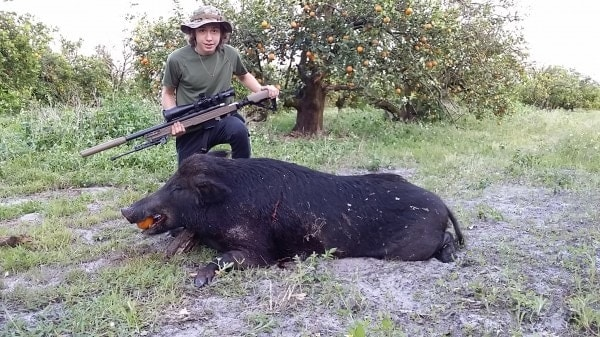 Currently suppressor-equipped hunters in Florida, such as this one, can only take feral hogs on private land. A proposed rule change to be voted on this week may greatly expand hunting rights in the state. (Photo: AAC https://www.aacblog.com )