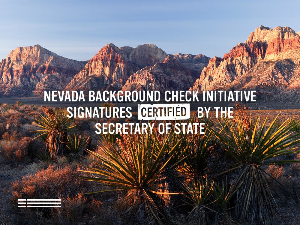 Everytown for Gun Safety gathered more than the required signatures to put a background check initiative in front of Nevada lawmakers. (Credit: Everytown / Facebook)