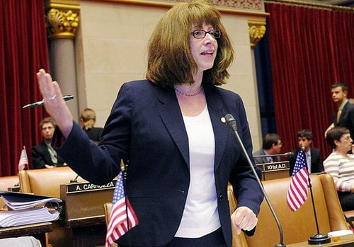 New York State Assemblywoman Linda B. Rosenthal wants persons under 12 barred from gun shows for the sake of curbing future gun violence. (Photo: assembly.state.ny.us)