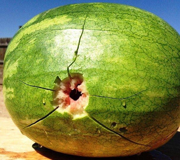 Frangible round, exit wound watermelon