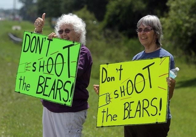 Animal rights activists are campaigning to stop a vote to allow bear hunting in Florida this week. (Photo: Sarasota Herald Tribune)