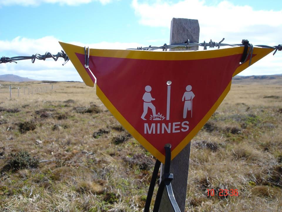 minefield falklands rmr