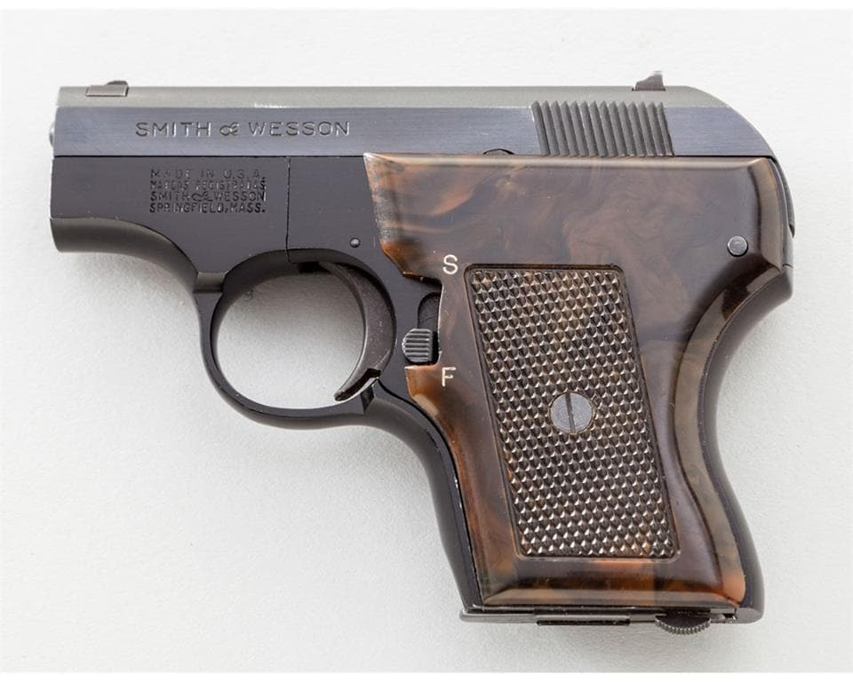 The .22-caliber Smith & Wesson concealed inside the suspect's body.