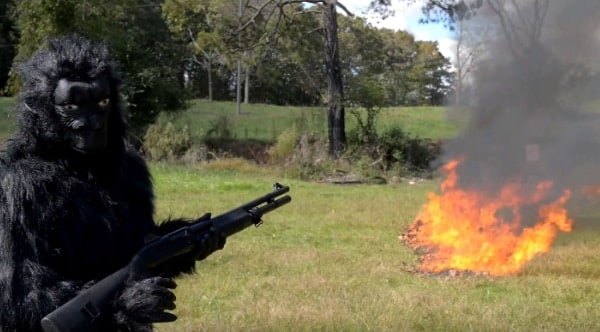 Dragon's Breath: The easiest way to rake your leaves (VIDEO)