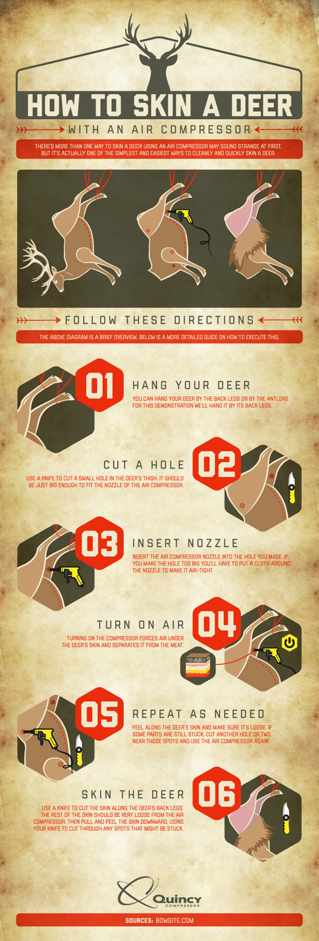 How to skin a deer with an air compressor infographic