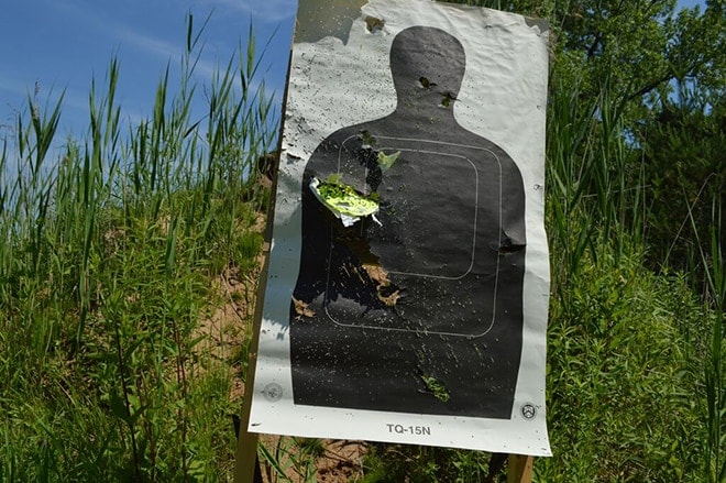 dp-12-target