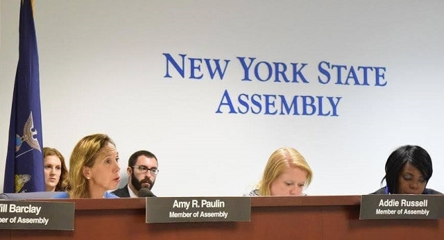 Assemblywoman Amy Paulin speaks at the New York State Assembly. (Source: Facebook)
