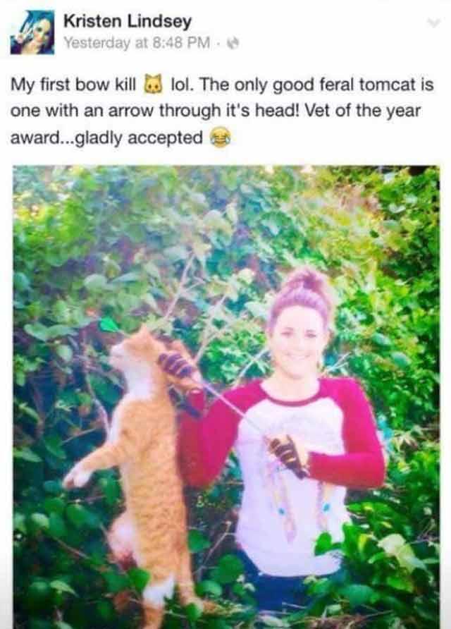 vet killed cat