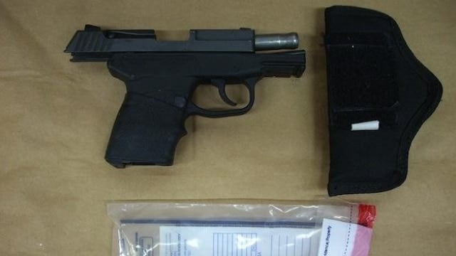 Zimmerman gun will most likely sell