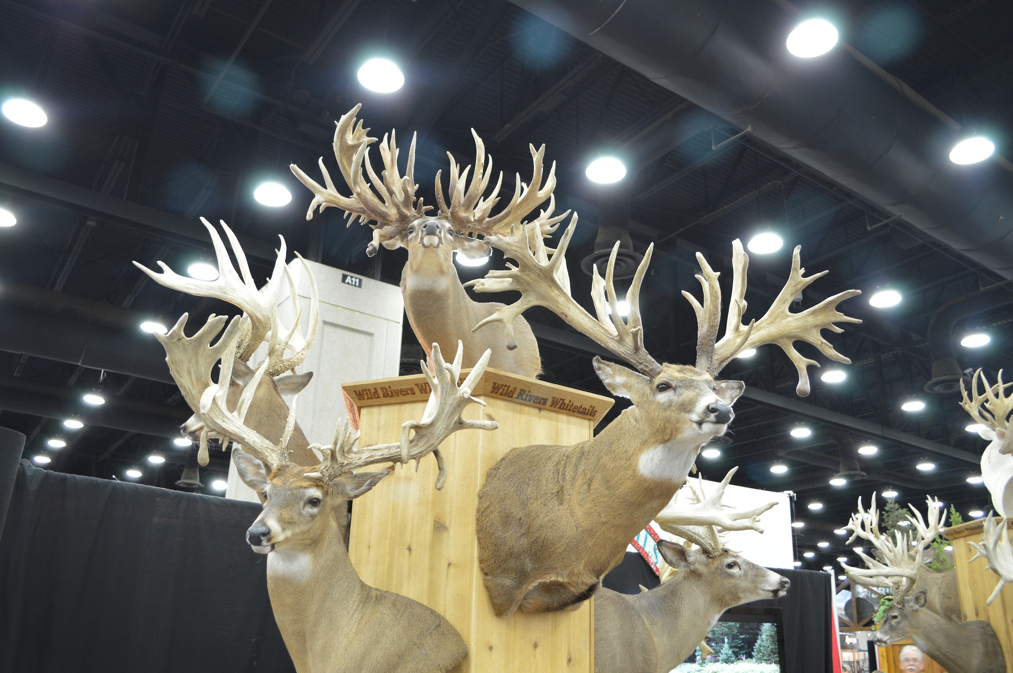 One last look at the eye-candy from Wild Rivers Whitetails of Wisconsin. (Photo: Kristin Alberts/Guns.com)
