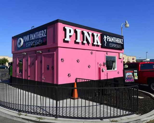 Pink Pantherz