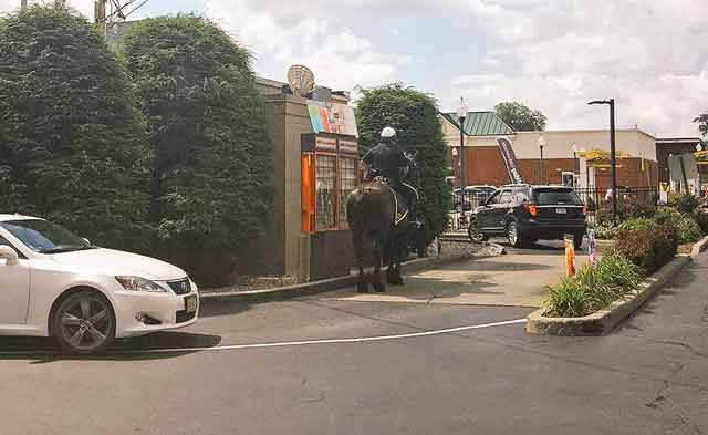 mounted police Dunkin Donuts