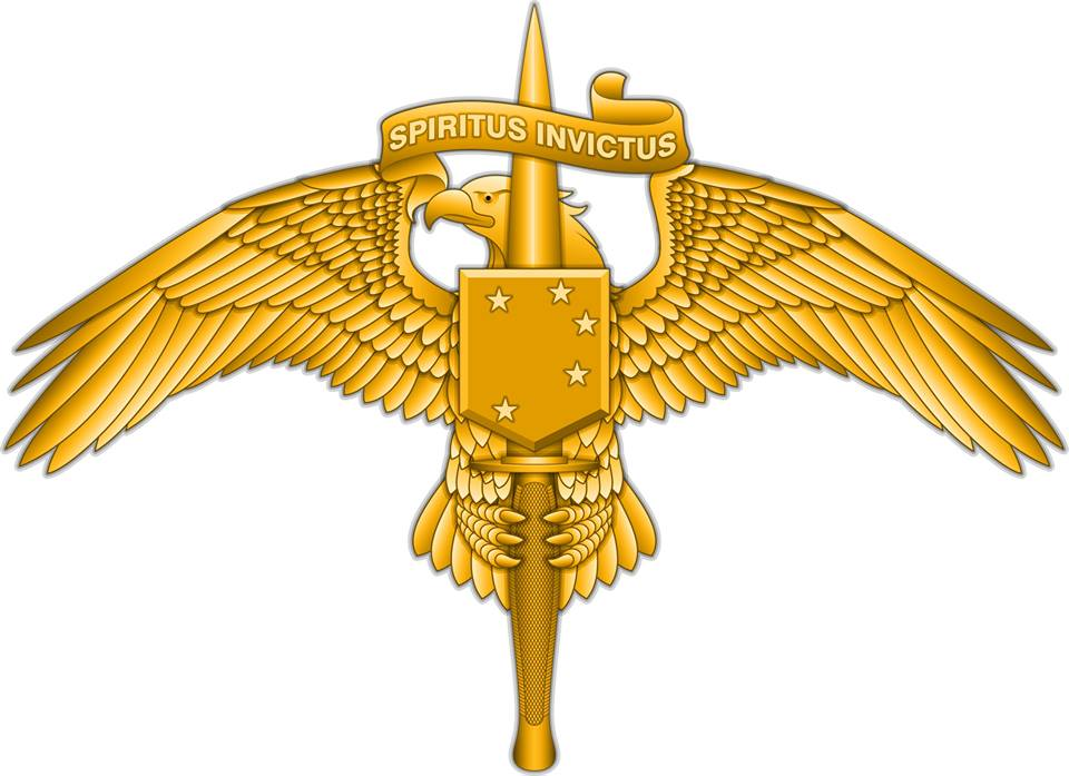 The new Marine Special Operator insignia is steeped in symbolism.