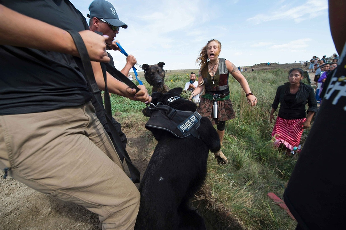 Dakota Access pipeline protestors were met with dogs and pepper spray after breaking through a fence in a construction zone last Saturday. (Photo: Robyn Beck/Getty Images)