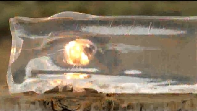 Sonoluminescence: One of the coolest parts of ballistics testing (VIDEO)
