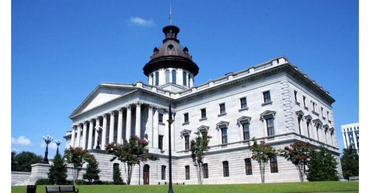South Carolina lawmakers schedule hearings for background ...