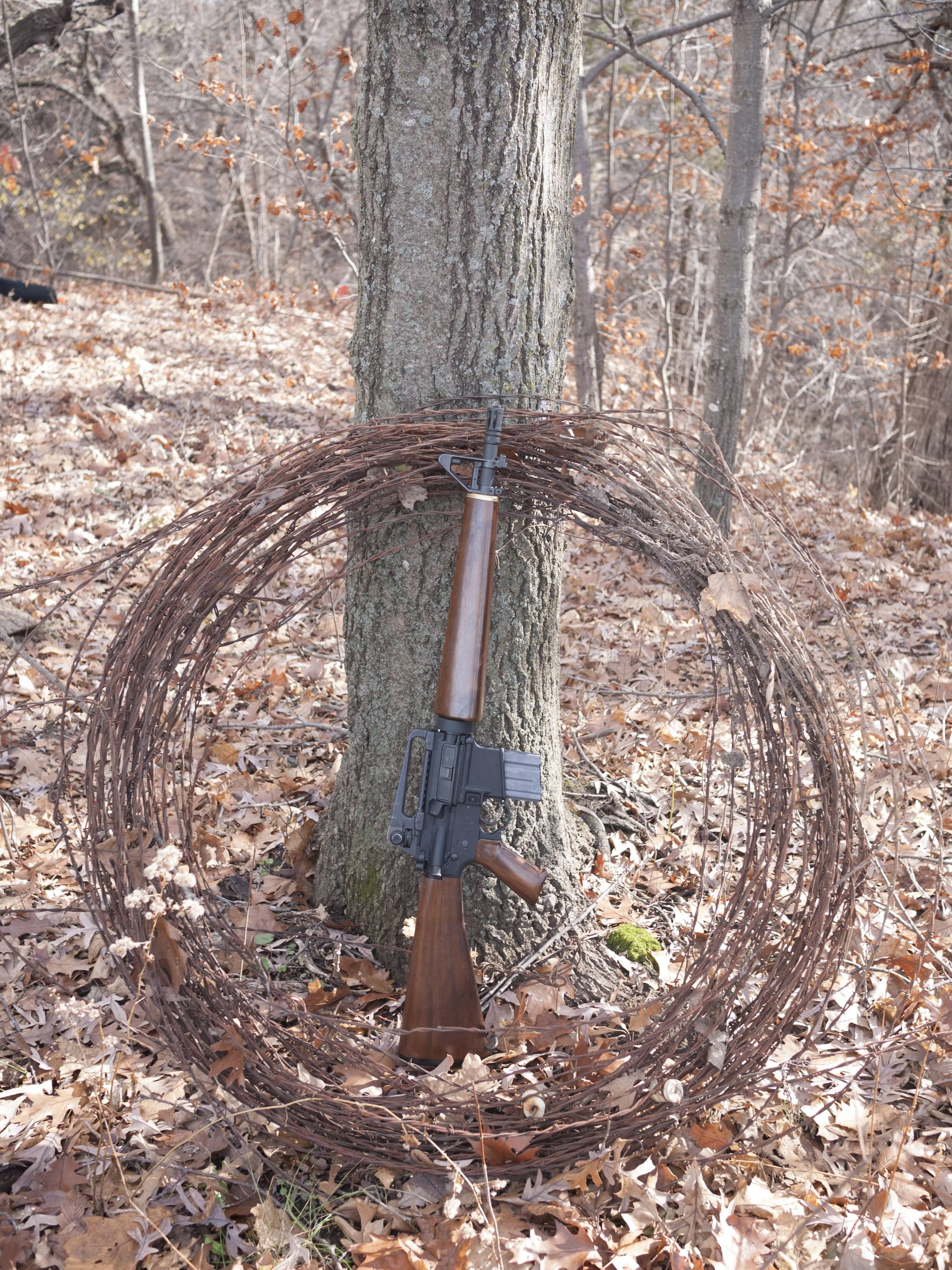 its-fall-lets-see-those-wood-stocked-ars-photos-5