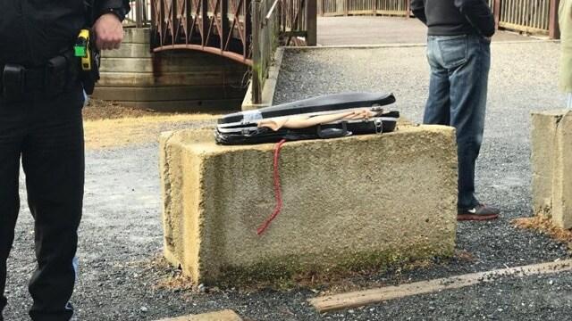 violin case guns
