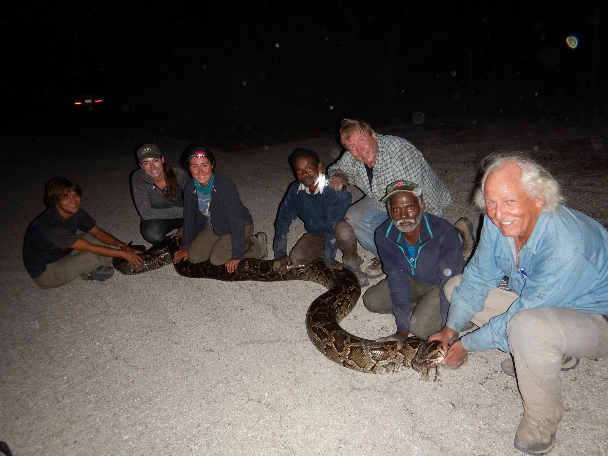 Florida taps in Indian tribesmen and detector dogs to tackle huge snakes (PHOTOS)