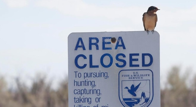 As of October 2016, the National Wildlife Refuge System is responsible for managing more than 850 million acres of lands and waters and could soon be closed to lead ammunition and fishing tackle. (Photo: Katie Theule/USFWS)
