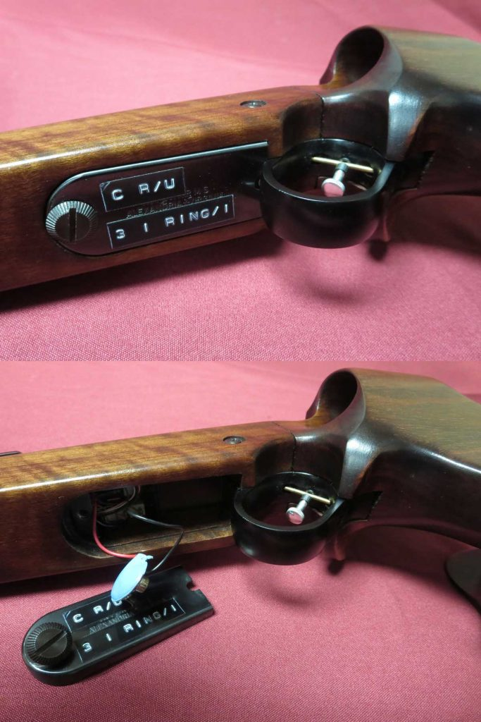 WaltherFPbatteryBay-683x1024