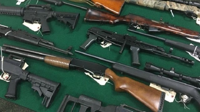 Hillsborough County Seriff David Gee said 66 guns were seized during investigation (Photo: WFLA)
