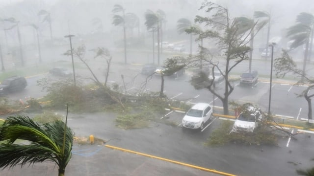 """Trees are toppled in a parking lot at Roberto Clemente Coliseum in San Juan, Puerto Rico, on September 20, 2017, during the passage of the Hurricane Maria. Maria made landfall on Puerto Rico on Wednesday, pummeling the US territory after already killing at least two people on its passage through the Caribbean. The US National Hurricane Center warned of """"large and destructive waves"""" as Maria came ashore near Yabucoa on the southeast coast. (Hector Retamal/AFP via Getty Images)"""
