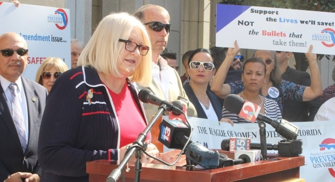 State Sen. Linda Stewart and other Democrats in the legislature are backing a number of proposals to increase gun regulations on Floridians. (Photo: Florida Politics)