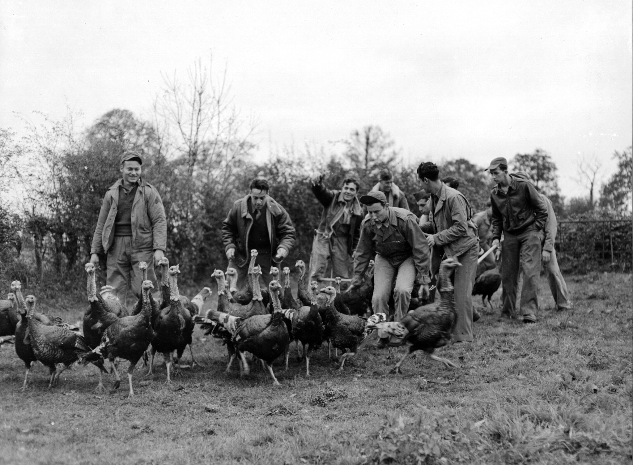 """After receiving permission from the farm owner, these men, attached to an airbase at Norfolk, England, invade a turkey pen to choose their annual turkey day repast. The turkeys were given to the men for their Thanksgiving dinners"""", November 6, 1943 (Photo: National Archives)"""