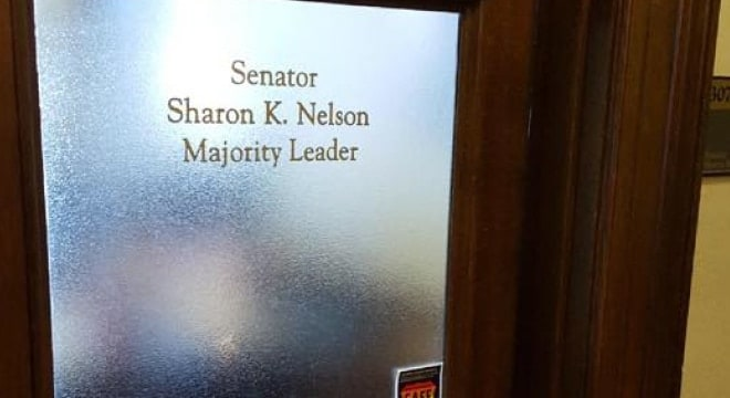 State Sen. Sharon Nelson earned a one-seat majority in the Washington Senate with the election last month of Democrat Manka Dhingra, backed in her race by gun control advocates. (Photo: WA Dems)