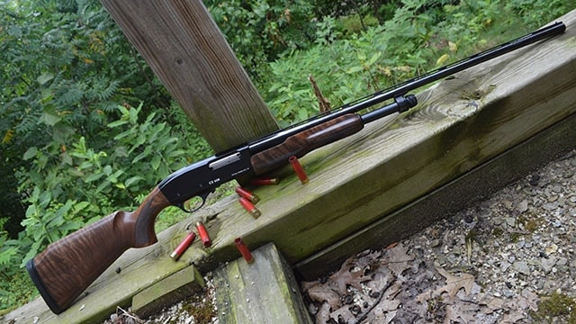 cz 628 field select sitting outdoors