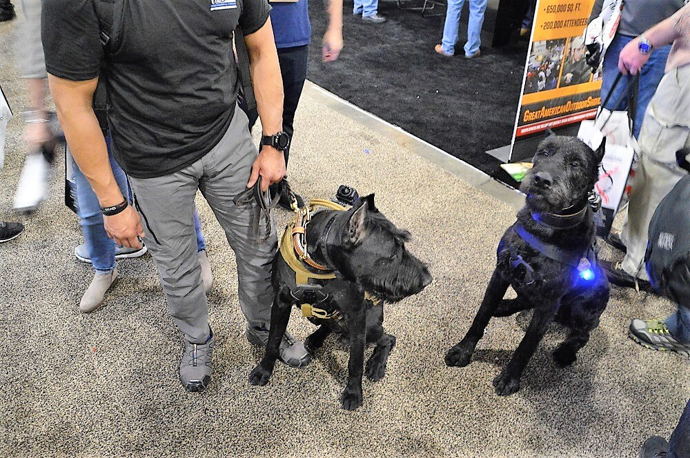 This two-pack of pooch partners came equipped with their own lights and cameras. (Photo: Chris Eger/Guns.com)