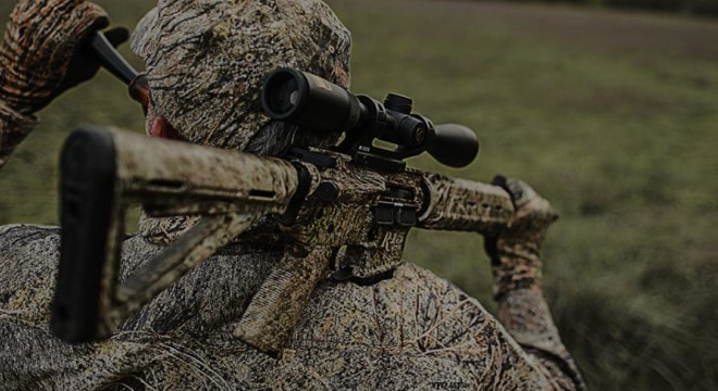 Delaware deer hunters shut out on semi-auto rifles