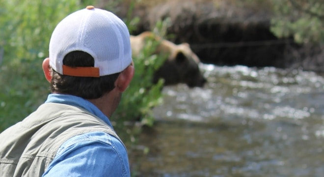 A federal judge this week reversed a rule change that allowed states around Yellowstone to manage the resurgent grizzly population (Photo: Wyoming Game and Fish Department)
