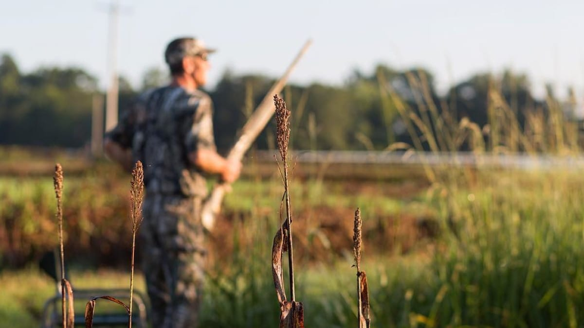 North Carolina voters add right to hunt, fish to state constitution