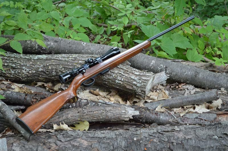 5mm remington rimfire, squirrel hunting