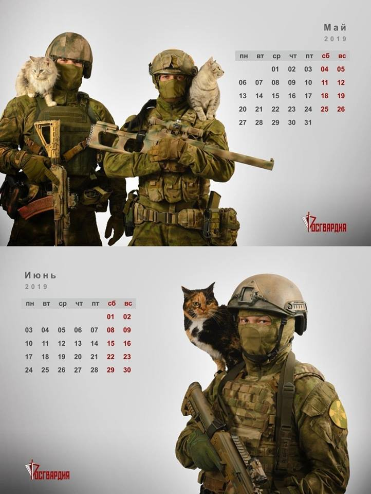 Military Calendar 2019 In Russia, calendars with operators and cats are a thing (PHOTOS)