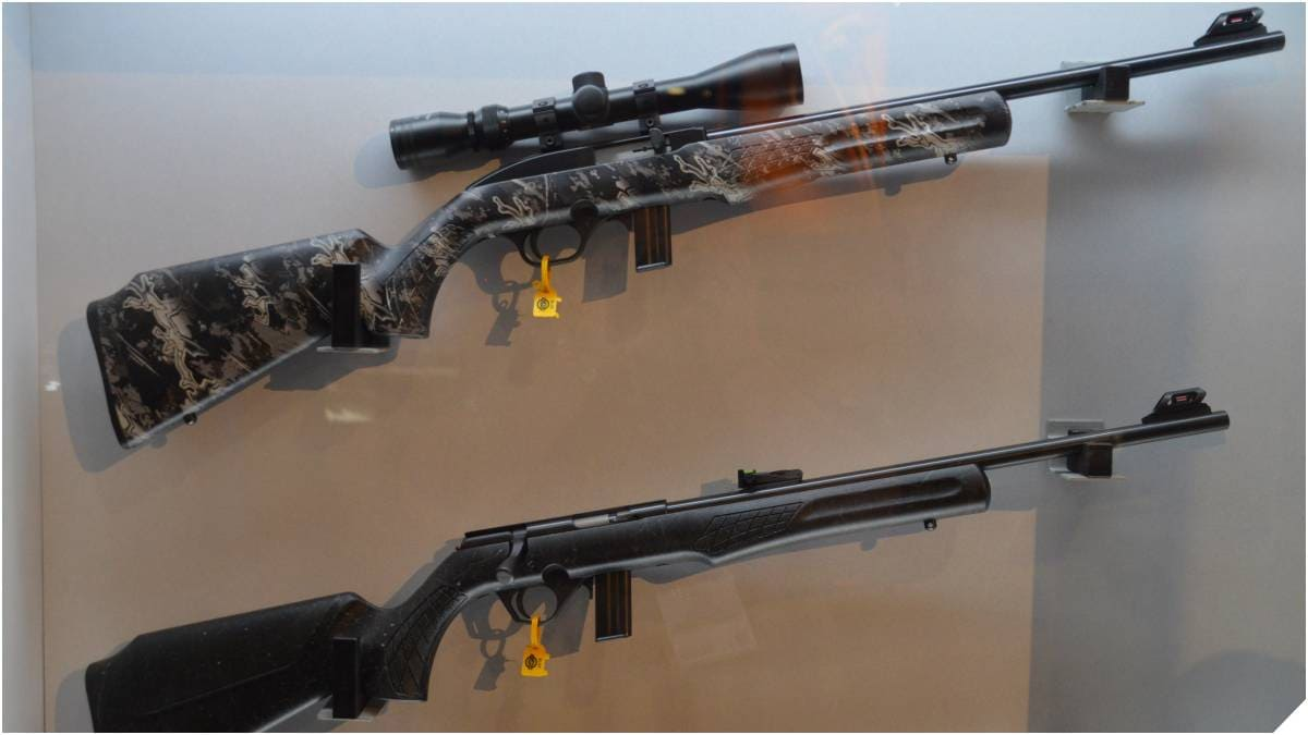 Semi-auto 22Lr rifles on a wall