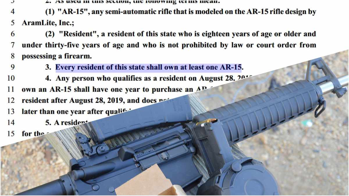split screen showing bill text mandating AR-15 ownership above a photo of an AR-15 rifle