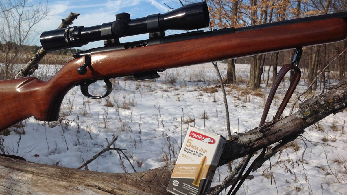 Aguila 5mm Ammo Breathes New Life into Forgotten Plinkers (VIDEO)