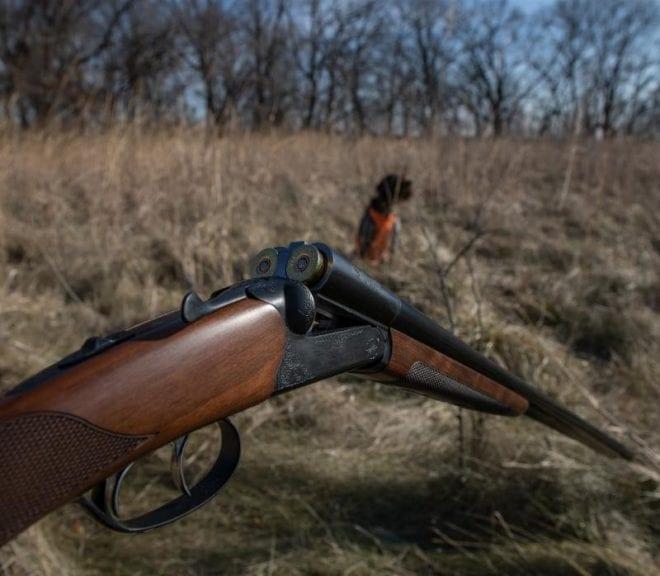 CZ-USA Bobwhite G2 SXS shotgun cracked open