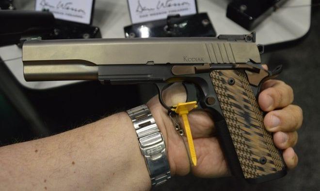 Dan Wesson Kodiak 10mm (3)