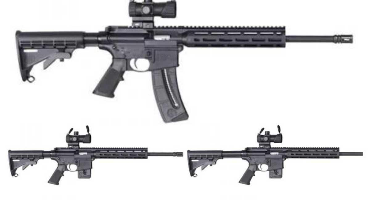 M-100 optics SW MP 15-22 variants