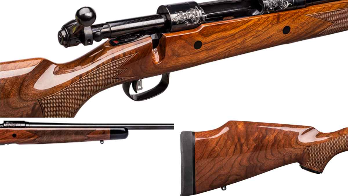 Wood on on Savage 110 125th anniversary gun