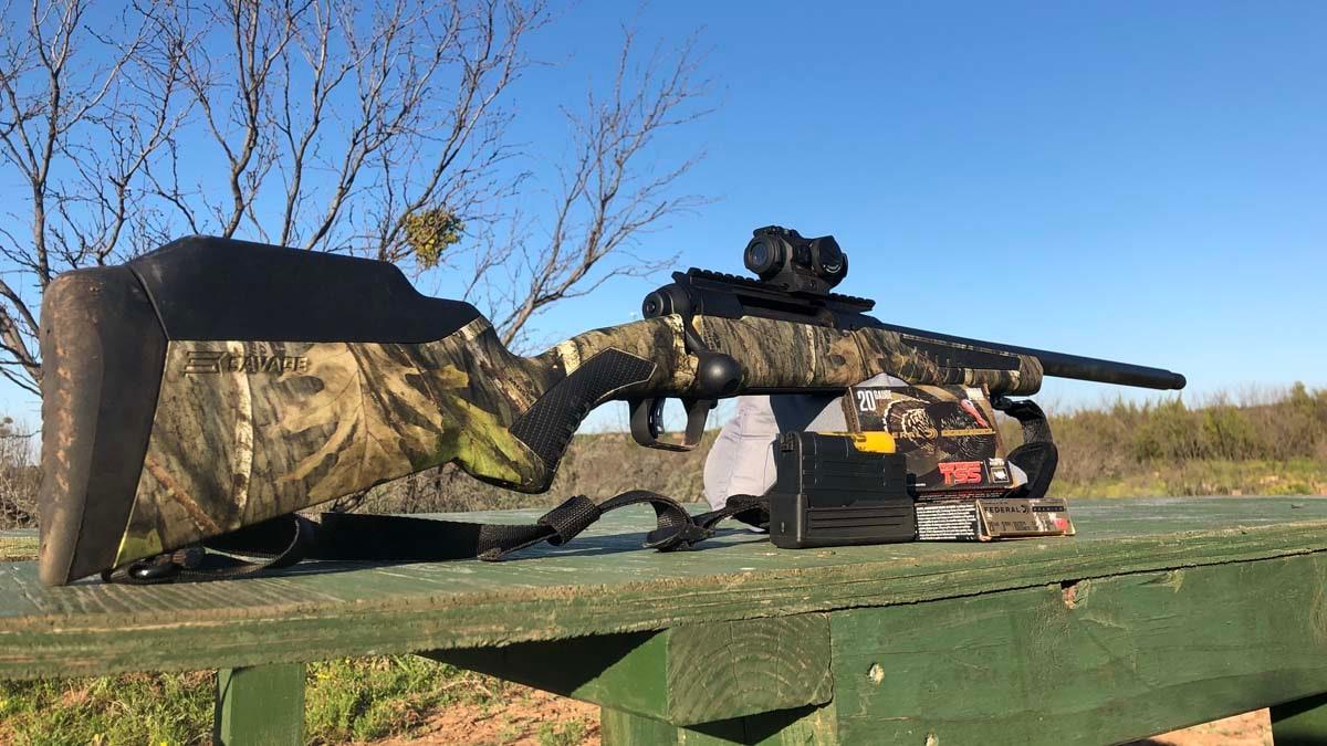 Savage 220 Turkey