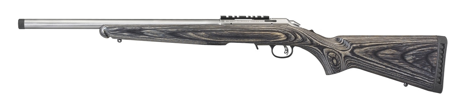 Stainless Ruger American Rimfire Rifle