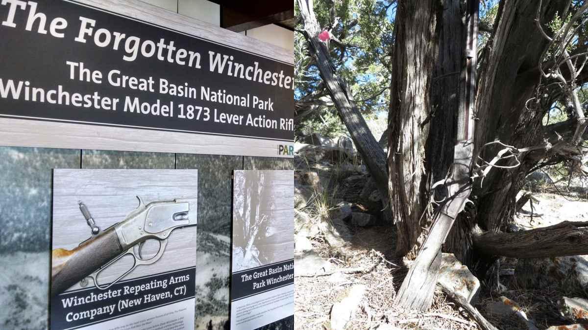 The Forgotten Winchester Model 1873