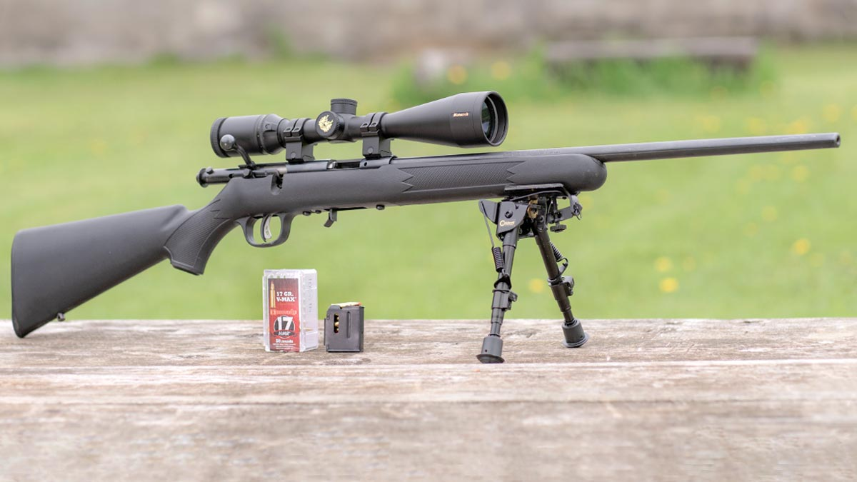 The Savage 93R17 Rifle is Great For Plinking and Varmints